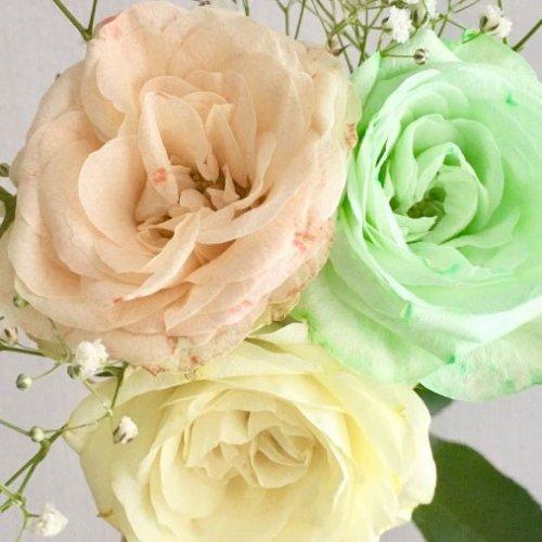 花を好きな色に染めてみよう!