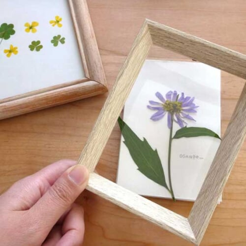 押し花の作り方と活用アイデア