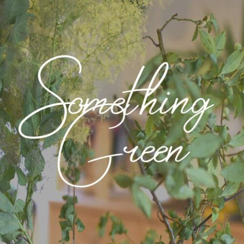 """8月はグリーンと暮らそう。""""Something Green""""で楽しむ爽やかなおうち作り"""